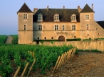 Clos de Vougeot Vineyard  Vougeot  France desktop wallpapers|free hq hd wallpapers Clos de Vougeot Vineyard  Vougeot  France