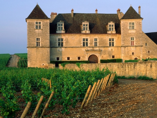 Clos de Vougeot Vineyard  Vougeot  France desktop wallpapers. Clos de Vougeot Vineyard  Vougeot  France free hq wallpapers. Clos de Vougeot Vineyard  Vougeot  France