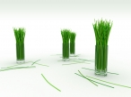 3D grass desktop wallpapers|free hq hd wallpapers 3D grass
