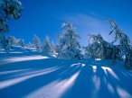 Winter desktop wallpapers|free hq hd wallpapers Winter