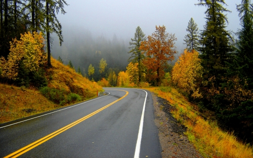 Automn and road desktop wallpapers. Automn and road free hq wallpapers. Automn and road