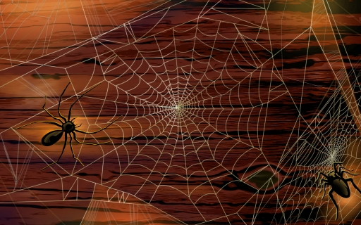 Spiders and web desktop wallpapers. Spiders and web free hq wallpapers. Spiders and web