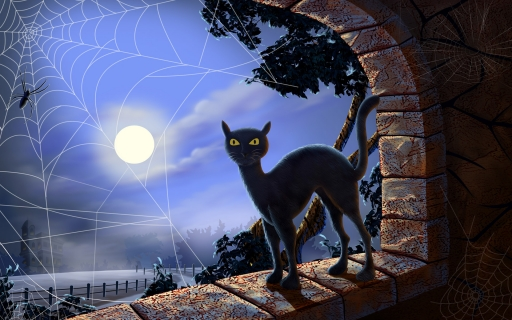 Black cat desktop wallpapers. Black cat free hq wallpapers. Black cat