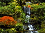 Japanese Garden  Portland  Oregon desktop wallpapers|free hq hd wallpapers Japanese Garden  Portland  Oregon