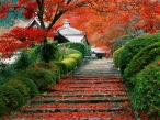 Garden Staircase  Kyoto  Japan desktop wallpapers|free hq hd wallpapers Garden Staircase  Kyoto  Japan