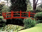 Japanese Garden  County Kildare  Ireland desktop wallpapers|free hq hd wallpapers Japanese Garden  County Kildare  Ireland