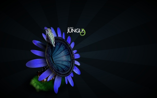 Audio jungli desktop wallpapers. Audio jungli free hq wallpapers. Audio jungli