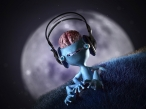 Music for brain desktop wallpapers|free hq hd wallpapers Music for brain